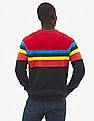 GAP Men Multi Colour Crazy Stripe Colorblock Pullover Sweater