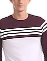 Roots by Ruggers Striped Panel Crew Neck T-Shirt